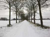 Winter_Daemmerwald.jpg